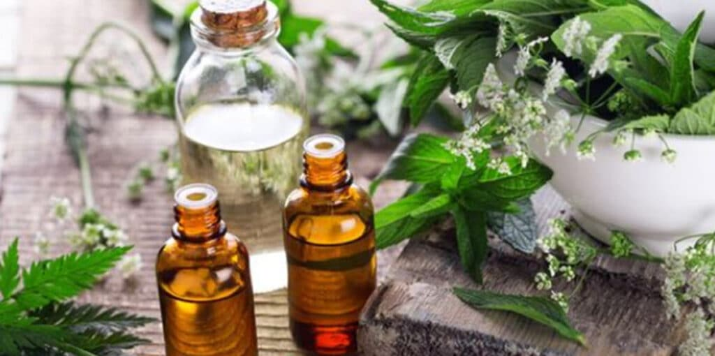 Alternative Medicine and Natural Ways to Boost Immunity for self-care.