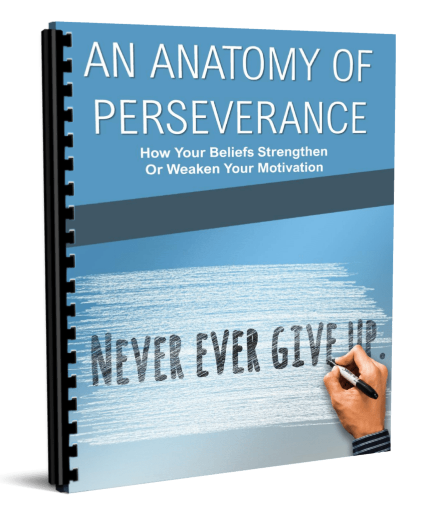 An Anatomy of Perseverance