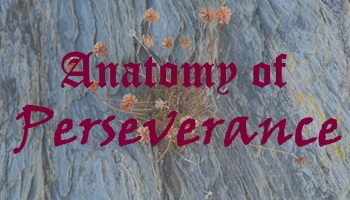 The Anatomy of Perseverance